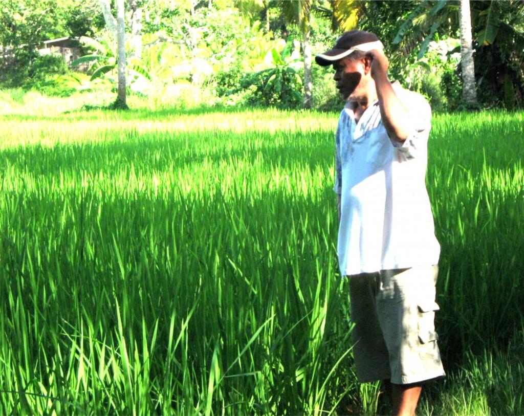 integrated-organic-farming