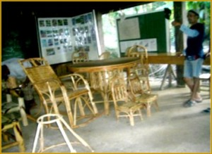 rattan-furniture-making